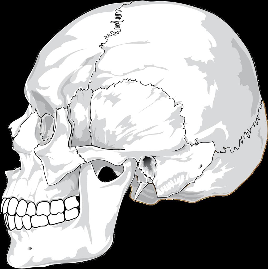 顎関節症の治療とマウスピースについて