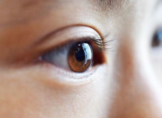 角膜潰瘍の治療に関する体験談