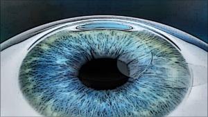 リレックスのレンクチルや角膜片